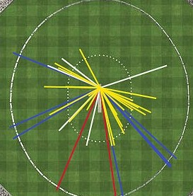 Wagon-wheel graph: runs scored per shot placement
